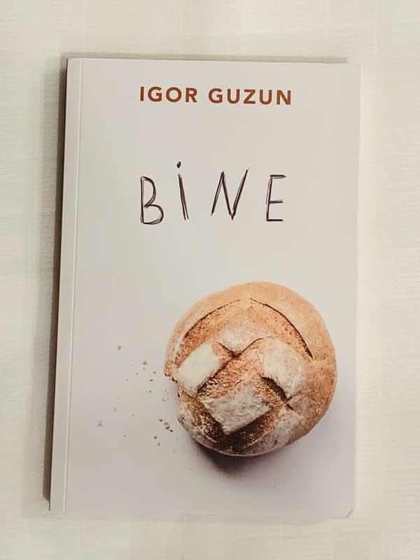 Bine de Igor Guzun